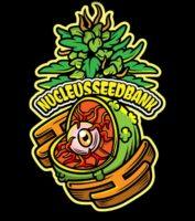 Nucleus seed bank worldwide seed bank